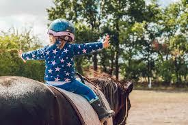 Medium horseride